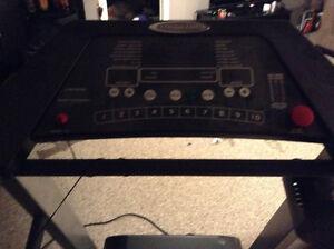 Endurance treadmill