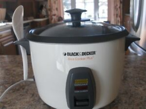 cuiseur a riz