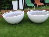 Pair of white fibreglass low bowl planters 72cm diameter
