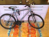 Barracuda nirvana bike