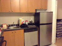 3 1/2 ALL INCLUDED, STAINLESS STEEL, DISHWASHER