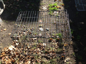 Pet cage dog cage little surface rusty solid , only 25 dollars Kitchener / Waterloo Kitchener Area image 3