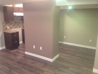 Complete Residential & Commercial Renovation services