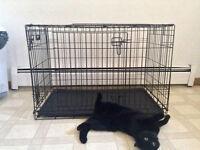 Medium sized dog kennel
