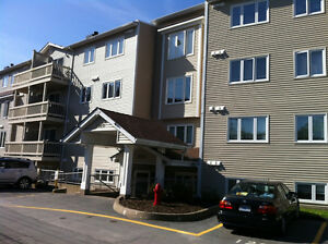Sunny & Bright 2 Bedroom, 1.5 in North End Halifax May 1st