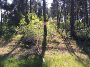 Two adjacent 1/2 acre lots near Tobin Lake and Rolling Pines