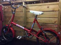 Raleigh Poppy Vintage / Chopper Bike (RARE)