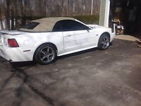 2001 Ford Mustang Convertible gt
