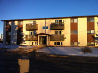 Millet, AB - Pet Friendly 1 & 2 Bedroom renovated apartments