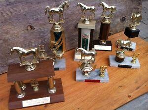 Lot de 7 Trophée Cheval