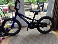 Kids Specialized Hotrock bike