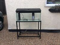 Clear seal complete tropical aquarium with stand