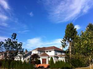 Large Private Rooms in Spacious Shared House (Hillcrest Park)