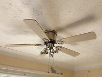 Ceiling Fan Light x 1