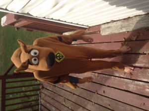 Scooby doo! Halloween customs, size 4-5
