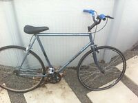 vintage fixed gear / single speed bike