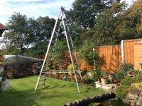 4.3 metre step ladder.