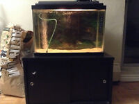 Fish tank and stand, with storage inside the stand!