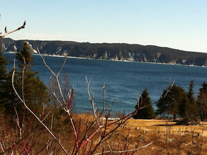 Overlooking the ocean, 1/2 acre lot, on the East Coast Trail St. John's Newfoundland image 3