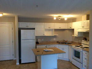 Two bedrooms Apartment Condo in South Terwillegar for rent.