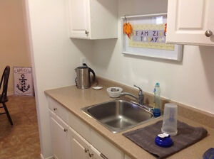 Room for Rent in Cute 2 Bedroom Apartment. Available...Now! Belleville Belleville Area image 2