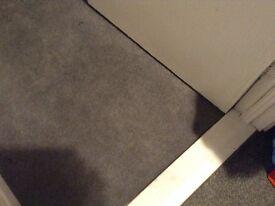 4 meters of grey carpet £60