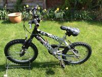 Boys Raleigh striker bike