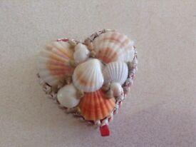 Love heart shell Jewellery box