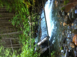 big placer claim on yeoward creek by charryvill bc