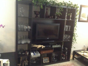 Entertainment Unit (TV Stand)
