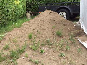 Belle terre végétale à donner environ 1 verge