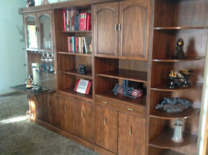 Tall Storage Cabinet | Buy and Sell Furniture in Edmonton | Kijiji ...