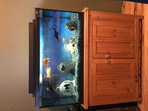 Aquarium tout équipée