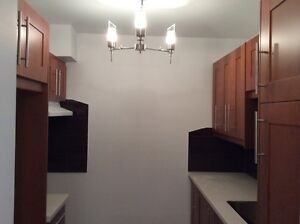 4 1/2  Style Condo Grand Apt Renove - Cartierville