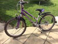 Foxy special edition hybrid purple and silver girls bike