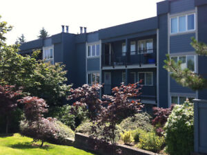 1 bedroom, West Coquitlam, Great location! Close to everything!