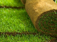 Need new Sod Installed Call us @ 403-465-4150 to book