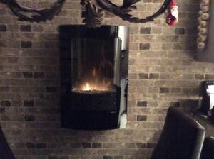 foyer électrique DIMPLEX avec manette