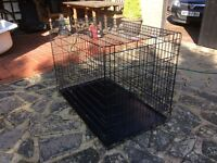 Large indoor dog kennel