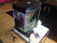Fish tank complete with remote controlled multi function LED lights.