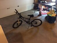 "Canadian Iron Horse Elements Mountian bike 20"" kids"