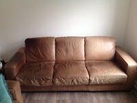 Natuzzi 2 & 3 seat sofa free FREE