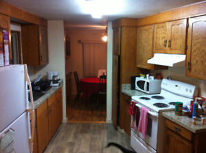 Shared house-room for rent  $400