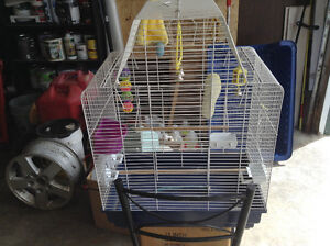 Gently used budgie/small bird cage