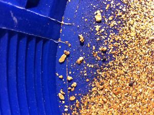 Placer gold Kingston Kingston Area image 5