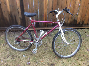 Vintage Raleigh Mountain Bicycle