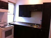 BEAUTIFUL AND SPACIOUS 1-BEDROOM APARTMENTS IN DOWNTOWN SUDBURY