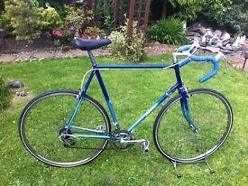 "Retro Dawes road bike 25"" frame"