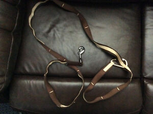 Waist hook leash