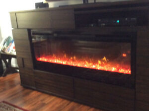 Dimplex Fireplace, remote controll and  entertainment center.